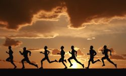 Which Race Distance Is Best For You?